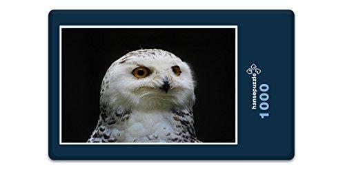 hansepuzzle 43827 Tierwelt - Eule, 1000 Teile in hochwertiger Kartonbox, Puzzle-Teile in wiederverschliessbarem Beutel