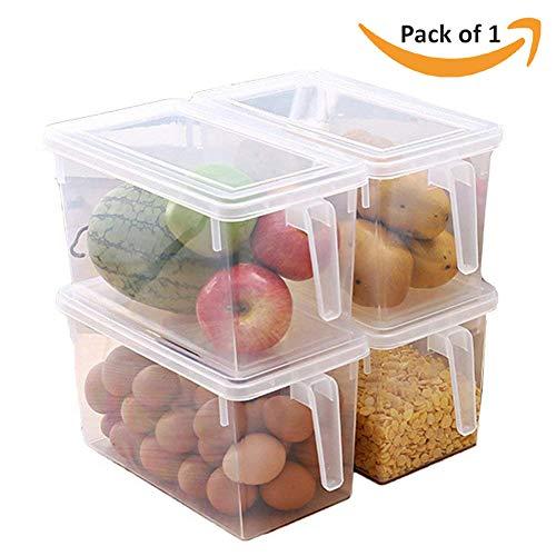 HomeFast Freezer Food Rack, Kitchen Food Container Box Food Crisper Refrigerator Storage Box with Handle (1 Pcs)