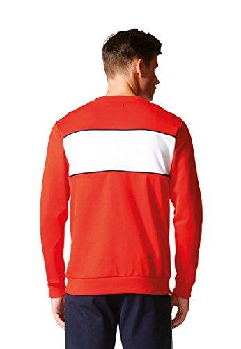 adidas Herren Block Crew Sweatshirt Rot/Rojbas