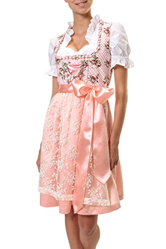Hailys Damen Dirndl Trachtenmode Damenkleid Oktoberfest (XL, Rose)