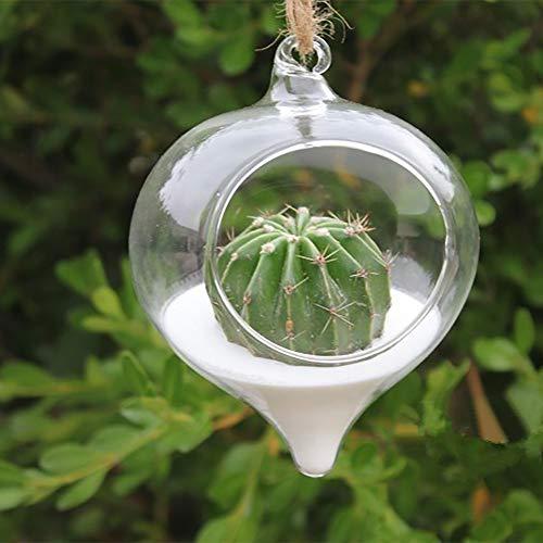 TAOtTAO Hängende saftige Vase Blumen-hängender Vase-Glaspflanzer-Pflanzen-Terrarium-Behälter-Ausgangshochzeits-Dekor (Große Saftige Terrarium)