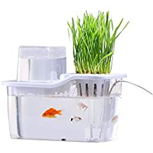 Mini Desktop Fish Tank Ecológico De Escritorio Peces Y Verduras Tanque De Peces Simbiótico Agua Acrílico