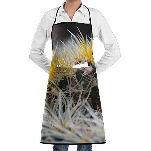Cactus Kostüm - dfgjfgjdfj Desert Cactus Flower Schürze Lace Unisex Mens Womens Chef Adjustable Polyester Long Full Black Cooking Kitchen Schürzes Bib with Pockets for Restaurant Baking Crafting Gardening BBQ Grill