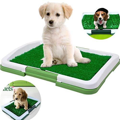 Inodoro para Mascotas Perro Césped Interior Orinal Perro Almohadilla de Entrenamiento de Hierba para Animal Doméstico STRIR