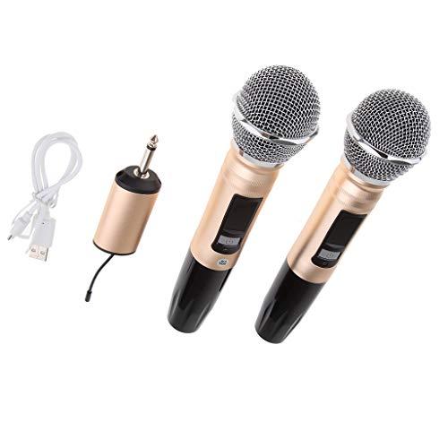 Homyl Funkmikrofon Bluetooth Handmikrofon Set mit zwei Dynamischen Mic und LED-Display für Familien-Karaoke-Party-Treffen, Bestes Mikrofon für Live-Vocals