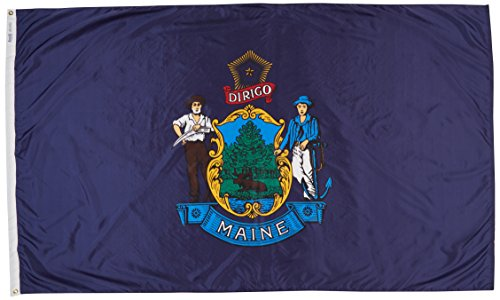 Annin Flagmakers Flagge Maine State 5x8 ft. 100% Made in USA to Official State Design Specifications -