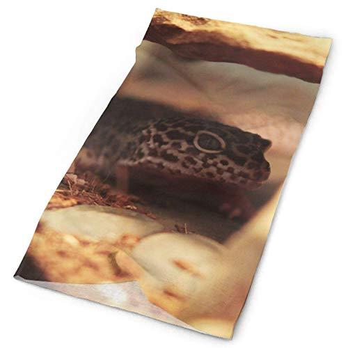 Leopard-eidechse (Murain Stirnband Maske Gecko Leopard Eidechse Pet Magic Headwear Multi-Use-Sport Haarband Outdoor-Schal Radfahren Coverchief Stirnbänder Seamless Magic Halstuch 25x50cm)
