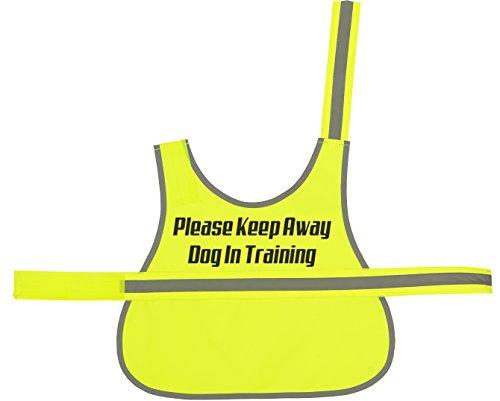 Hund in Training, gedruckt Hi-Vis Hunde Weste - Gelber Labrador Retriever Training