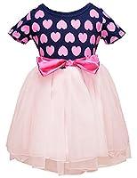 Little Sorrel Little Girls Dresses Short Sleeve Polka Dots Printed Tulle Tutu Dress Size 2 - 3 Y
