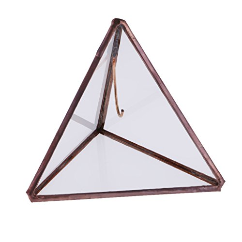 MagiDeal Dreieck Pyramide Geometrisches Glas Terrarium Box Glas Sukkulente Pflanzgefäß Deko