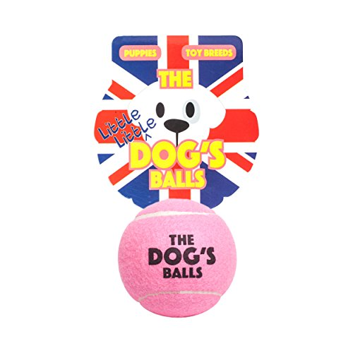 The Little Little Dog's Balls, 6 Small Premium Tennis Balls for Dogs, Puppy, Small Dog or Cat. For Exercise, Play, Training & Fetch. Too Small for Chuckit, The King Kong of Dog Balls