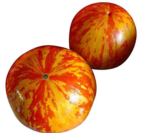 Gartenbambus 80-100 cm,
