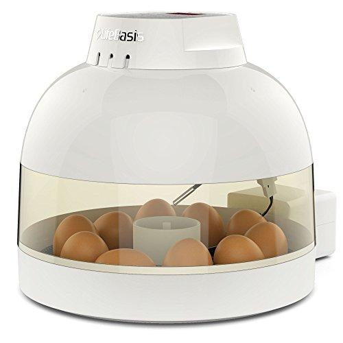Lifebasis incubatrice per uova, incubatrice automatica rotazione compatta da 10 uova per il pollame controllo automatico di temperatura e umidità per galline anatre oche uccelli, uso casalingo
