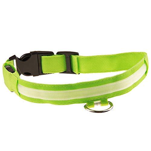 CAOQAO Justierbare Halskette für Hund und Katze Nacht Sicherheit Flashing Luminous Halskette - USB wiederaufladbar für Hund klein/mittelgroß/groß