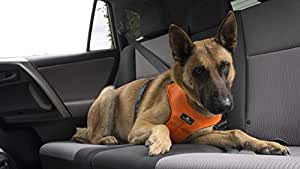Sleepypod Clickit Sport >> Sleepypod Clickit Sport Safety Harness (Orange Dream, Large) by Clickit Sport Harness: Amazon.co ...