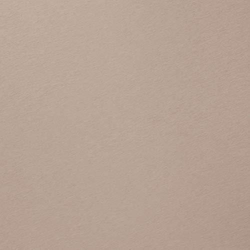 Simplehuman Gallon Poubelle de Cuisine rectangulaire en Acier Inoxydable avec Poche intérieure, Acier Inoxydable, Rosagold, 33,8 x 40,4 cm