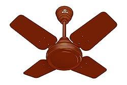 Bajaj Speedster 600mm Ceiling Fan (Matt Brown)