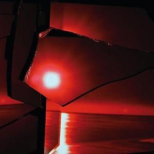 """Afficher """"Nine types of light, 2011"""""""