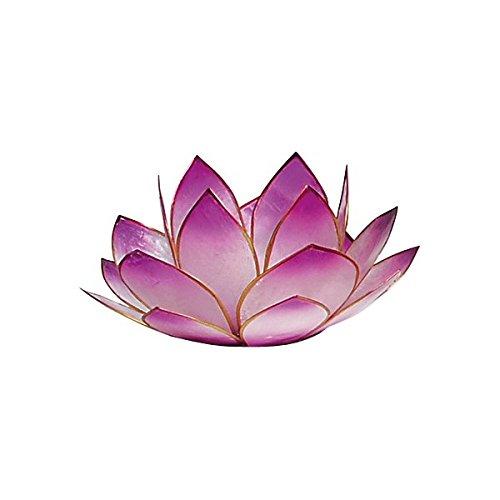 Photophore lotus - coloris lavande