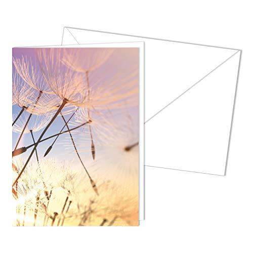 Würdevolle Trauerkarte mit Umschlag I DIN A6 I Beileidskarte Kondolenzkarte mit Natur-Motiv I hochwertig, modern I neutral dv_503