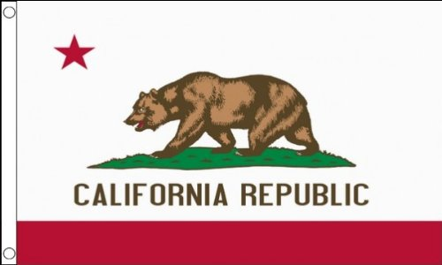 3 ft x 2 ft (90 x 60 cm) California USA State 100% Polyester Material Flagge -