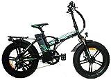 Reset Fat-Bike Bicicletta Elettrica Pieghevole a Pedalata Assistita 20' 250W Redwood Nero e Verde