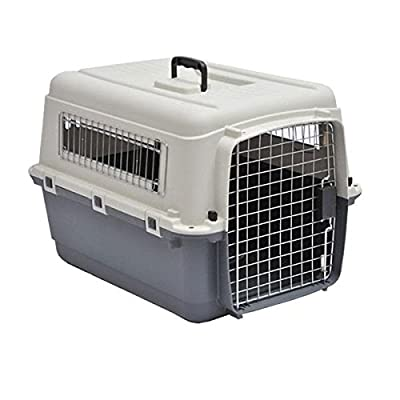 L70 Luxx airline approved carrier by Doghealth intermediate 28""