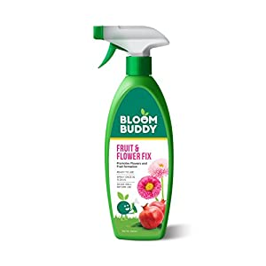 BLOOMBUDDY Fruit and Flower Fix (500 ml)