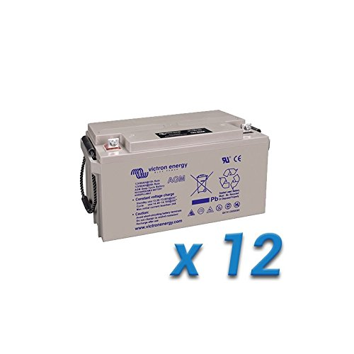 Set 12 x Batterie 240Ah 6V AGM Deep Cycle Victron Energy Photovoltaik Camper (Cycle Volt 6 Batterie-deep)