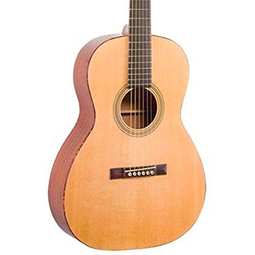 Recording King Gitarre RP2-626