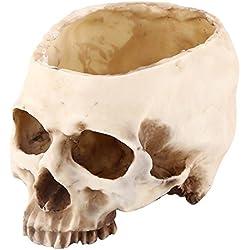 Walfront Maceta de Calavera de Resina Jarrón de Cráneo Modelo de Cabeza de Resina para Halloween