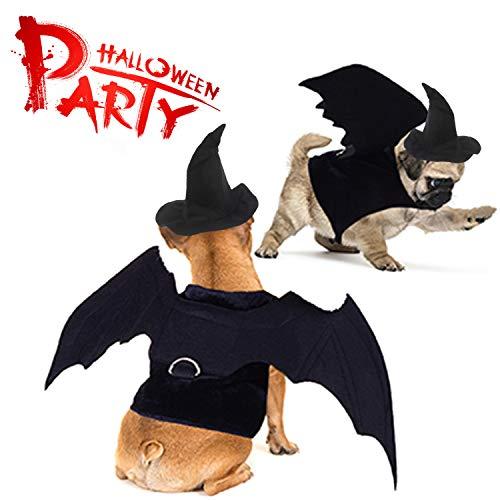 LOCOLO 2 Stück Halloween Haustier Kostüm Hund Fledermaus Flügel und Hexenhut für Haustier-Motto-Party, süßes Halloween-Kostüm für kleine Hunde Welpen (Band Motto Kostüm)