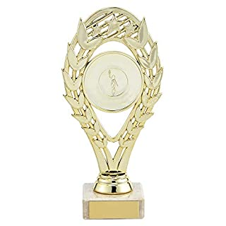 A1 PERSONALISED GIFTS Hestia Gold Any Sport Trophies