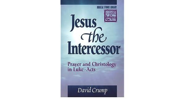 Buy Jesus the Intercessor: Prayer and Christology in Luke-Acts