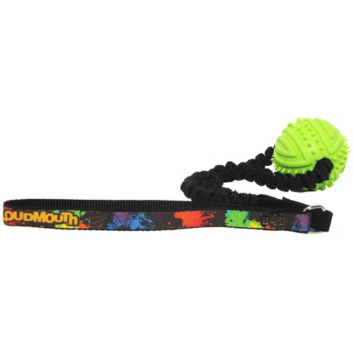 hunter-loudmouth-golf-paint-balls-rubber-ball-bungee-toss-toy-one-size-black