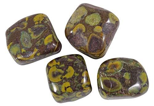 HARMONIZE Amapola Jasper Piedra roulées tamaño clasificado Piezas Piedras- 4 Reiki Naturel
