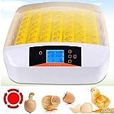 Sailnovo 56 Eier Inkubator Brutmaschine LCD Vollautomatisch Brutapparat Brutkasten für Hühner Geflügel