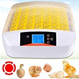 Sailnovo 56 Eier Inkubator Brutmaschine LCD Vollautomatisch Brutapparat...