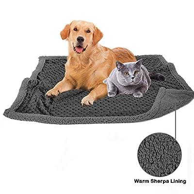 Allisandro® Dog Blanket Black for Cats Puppys Upgrade Double Using Premium Fluffy Fleece Pet Blanket Pet Throw Super Soft Warm by ALLISANDRO