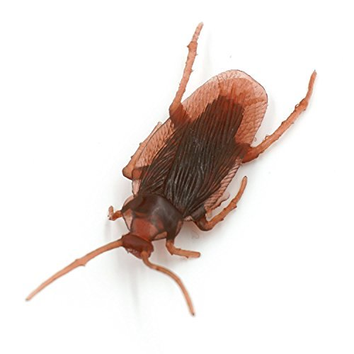 cooplay-20pcs-vintage-mock-fake-plastic-cockroach-roach-black-beetle-insects-joke-toys-prank-scary-t