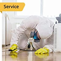 Pest control - 1 Bedroom Flat - General Pest Control for Indoor