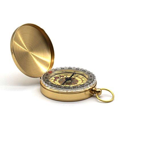 Toller Kompass