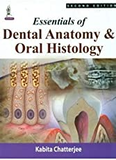 Essentials Of Dental Anatomy & Oral Histology