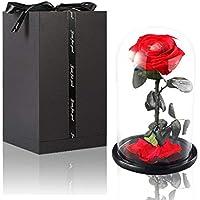"""Tumao Ewige Rose Rot,""""Der kleine Prinz"""" Rose-Set, Perfekt als Geschenk für die Hochzeit, Geburtstag, Festival, Weihnachten, Jubiläum, Valentinstag - Haltbare Blumen (ECHTE Rosen)"""