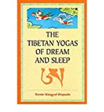 The Tibetan Yogas of Dream and Sleep by Tenzin, Wangyal Rinpoche ( AUTHOR ) Oct-26-1998 Paperback