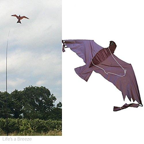 Hawk Kite 3D & 5m Fahnenmast Teleskop gratis Line Rig Bird Crop