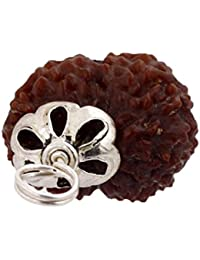 Amorfos 12 Mukhi/Faced Rudraksha Pendant With Silver Coated Capping And Lab Certificate, Nepal Originated Rudraksh...