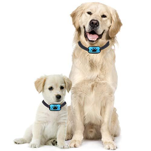 Anti bell Hundehalsband - Stoppt das Bellen von Hunden auf humane Art mit Ton & Vibration, keine Schocks, 7 verstellbare Stufen - bell halsband / hundeerziehung halsband