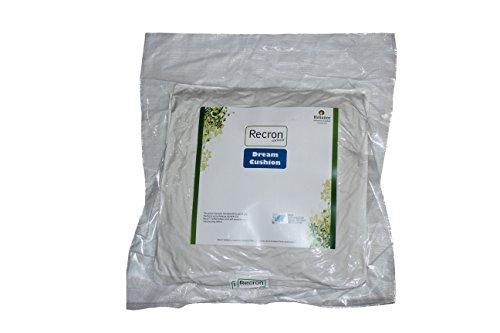 Recron Dream 2 Piece Microfibre Cushion - 16