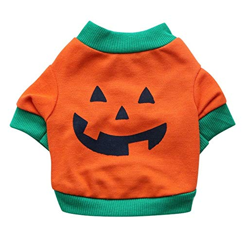 NiQiShangMao Neues Halloween-Haustier-Welpen-Weste-T-Shirt Orange Kürbis-Sweatshirts Katze kleidet Kostüm-kleines Hundeweiches Hemd